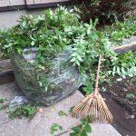 ハウスクリーニング:その他庭の伐採・剪定・草刈り